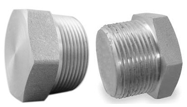 SS Threaded Hex Plug