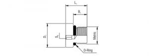 Dimensions of Blanking Plug